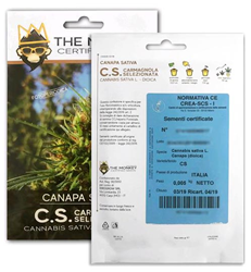 Ense Certified Canapa Seeds